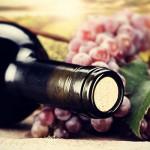 ミッシェル・エルブラン ワインフェア